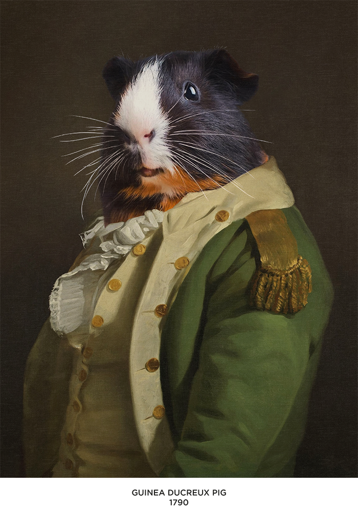 broscure Royal animal portrait-18