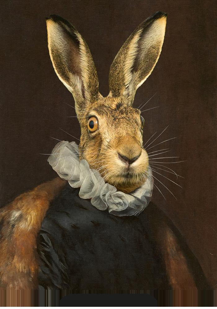 broscure Royal animal portrait-7
